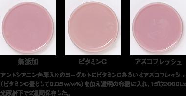 アスコフレッシュ_応用例_アントシアニン色素入りヨーグルト(15℃、2000Lx、2週間)